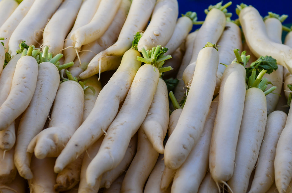 photo credit: Franco Folini Daikon radish (Raphanus sativus var. longipinnatus) via photopin (license)