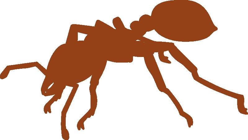 【虫注意】ヒアリの無料イラストあります