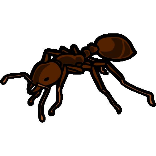 ヒアリの画像 p1_13