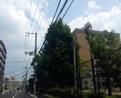 放送大学大阪学習センターがある大阪教育大学天王寺キャンパス