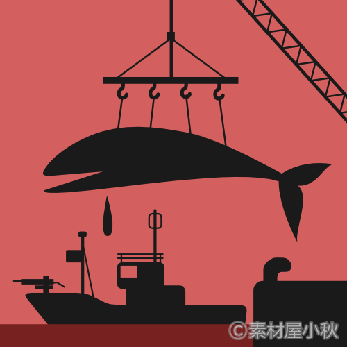 私が商業捕鯨に「反対」とまでは言えない理由